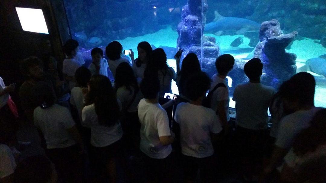 Colégio Imperatriz Leopoldina – Projeto um dia no aquário