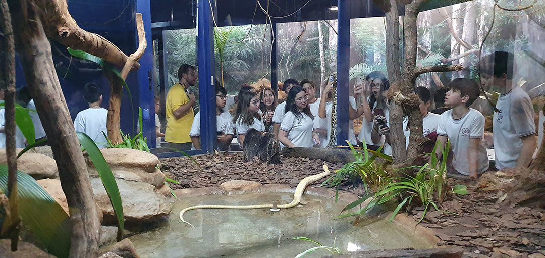 Colégio João XXIII – Instituto Butantan – parte 2